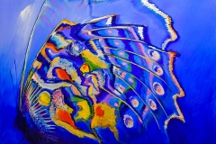 farfalle-aldo-canzi